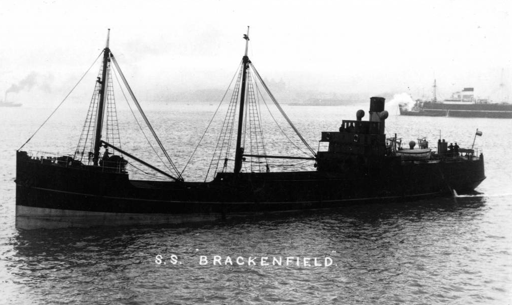 Picture of Steam Ship Brackenfield